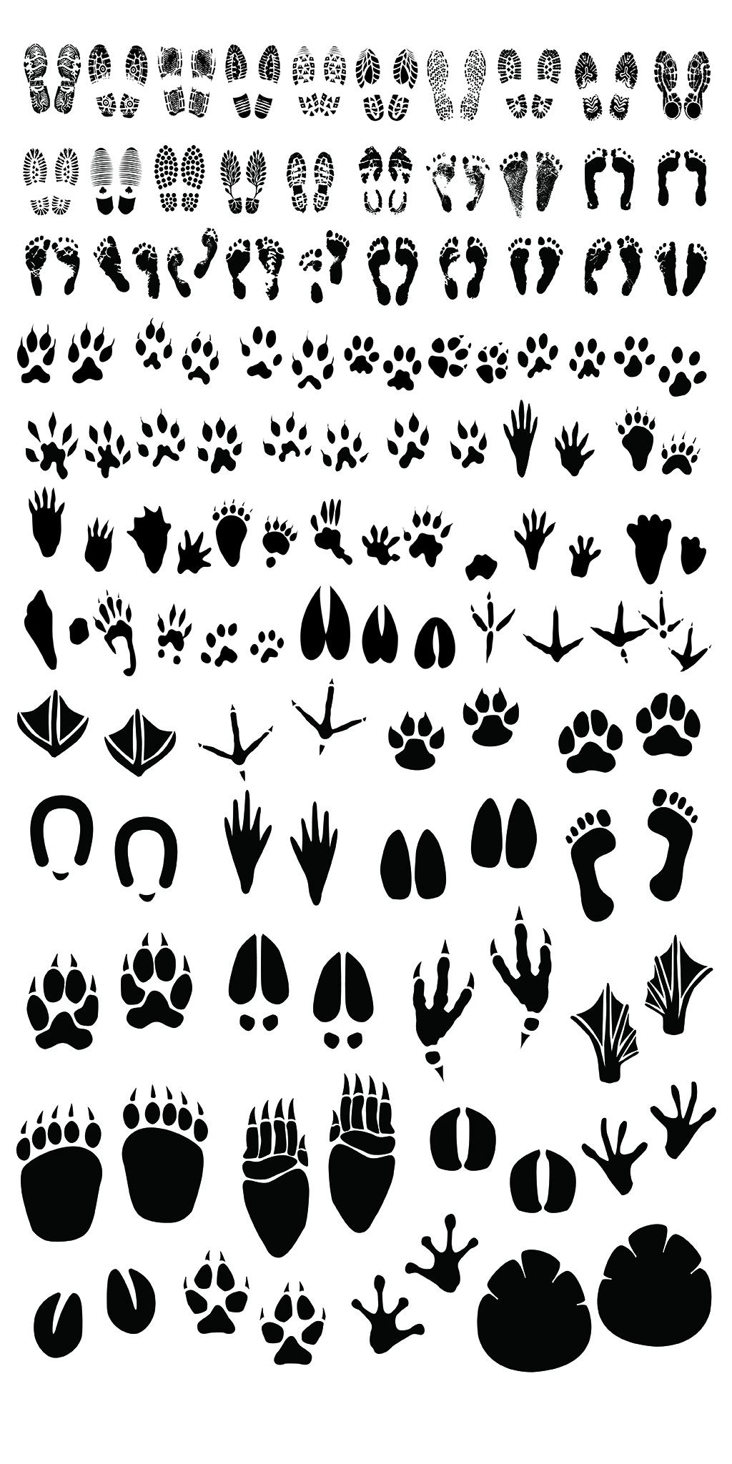 设计元素 背景素材 其他 > 卡通手绘动物人物脚印图片海报素材   图片