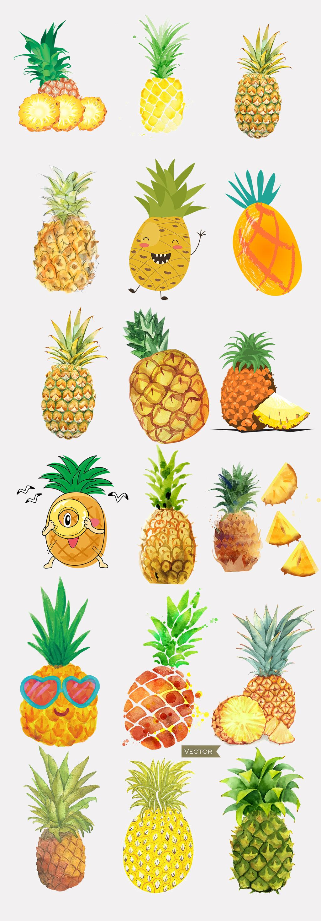 手绘菠萝                                    可爱小