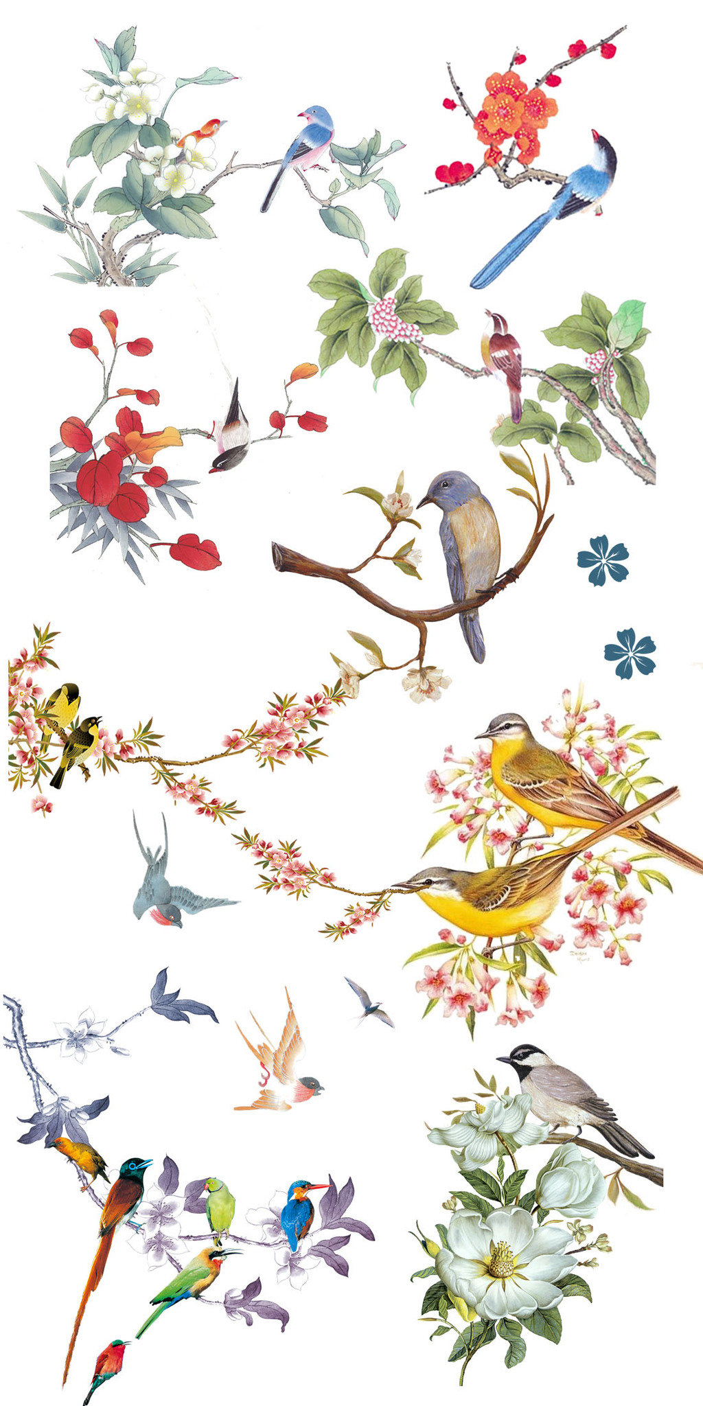 唯美清新手绘树枝花鸟淘宝素材
