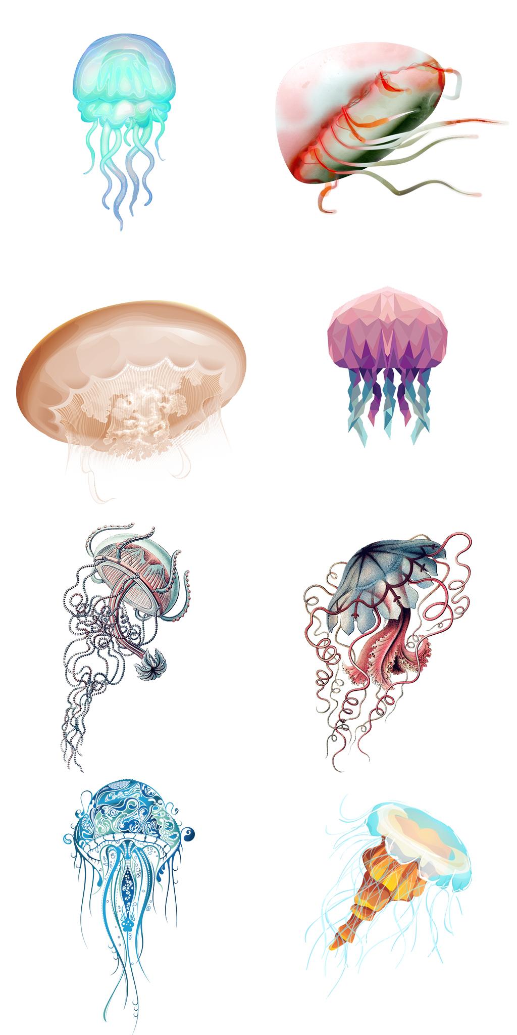 手绘海洋生物水母插画图案png图片设计素材_高清psd()
