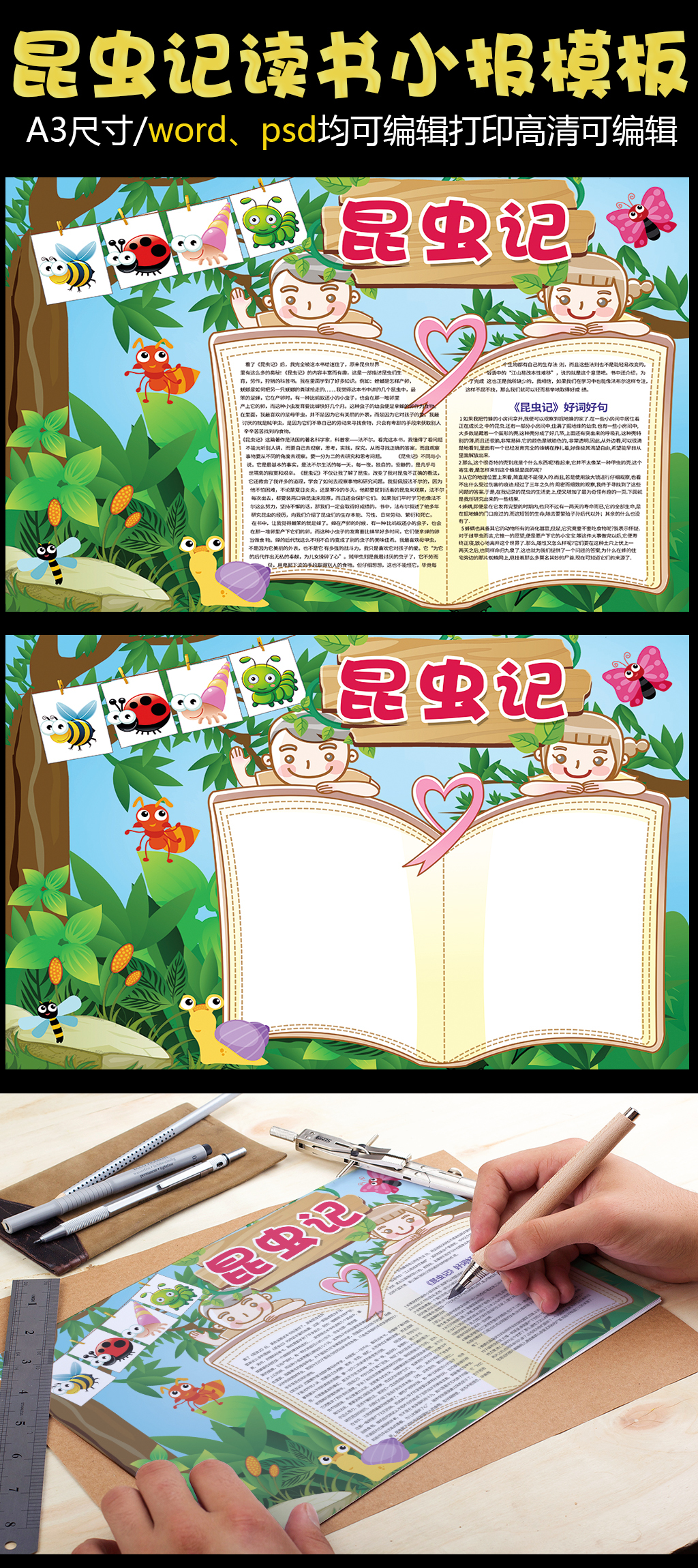 昆虫记西方名著读书小报模板