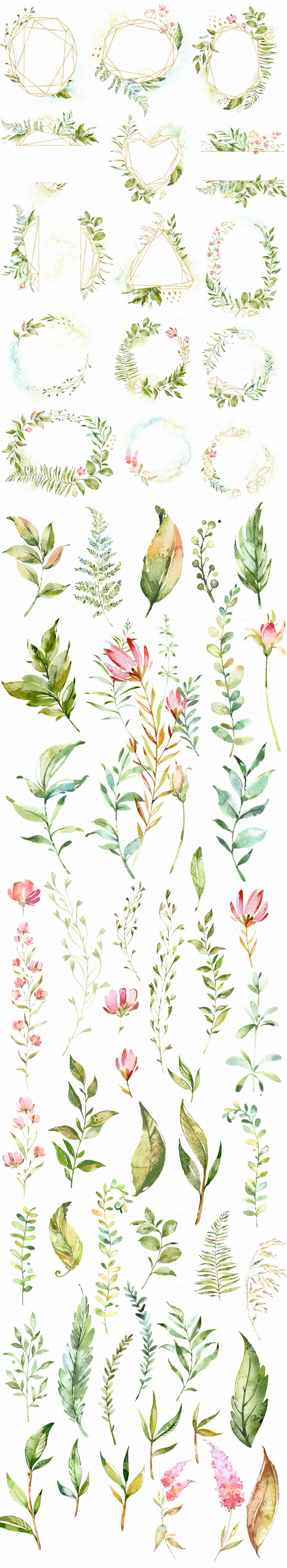 清新手绘水彩叶子绿色植物png素材