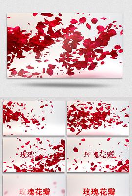 漂亮的玫瑰花瓣logo揭示开场AE模板