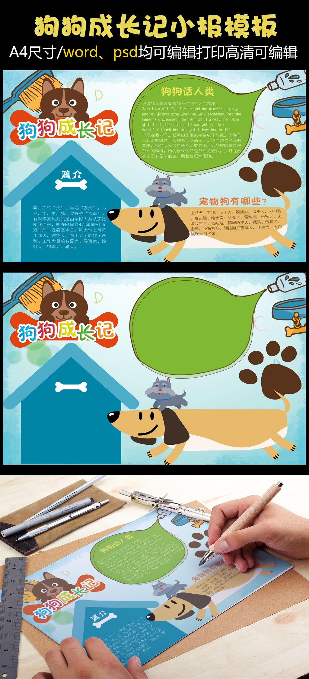狗狗成长记手抄报小报模板