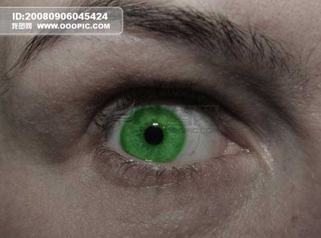 眼部特写 蓝色眼睛 绿色眼睛 棕色眼睛 大眼睛 小眼睛