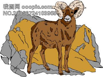 野生动物矢量图